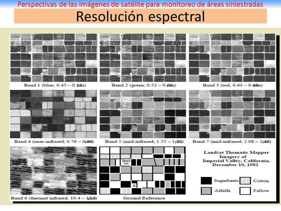 Resolución espectral Perspectivas de las imágenes de satélite para monitoreo de áreas siniestradas