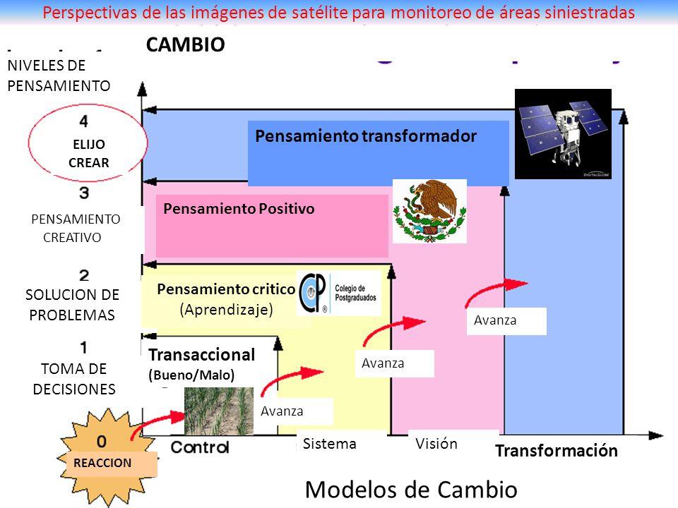 EVOLUCION DE NIVELES DE PENSAMIENTO PARA CAMBIO NIVELES DE PENSAMIENTO ELIJO CREAR PENSAMIENTO CREATIVO SOLUCION DE PROBLEMAS TOMA DE DECISIONES REACC