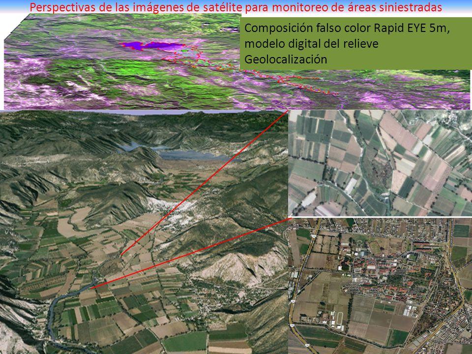 Perspectivas de las imágenes de satélite para monitoreo de áreas siniestradas Composición falso color Rapid EYE 5m, modelo digital del relieve Geoloca
