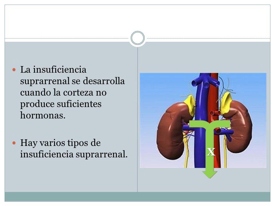 La insuficiencia suprarrenal se desarrolla cuando la corteza no produce suficientes hormonas. Hay varios tipos de insuficiencia suprarrenal. X