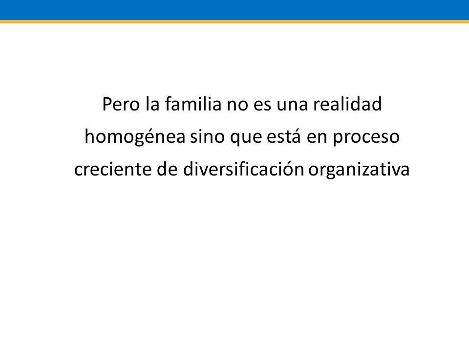 Pero la familia no es una realidad homogénea sino que está en proceso creciente de diversificación organizativa