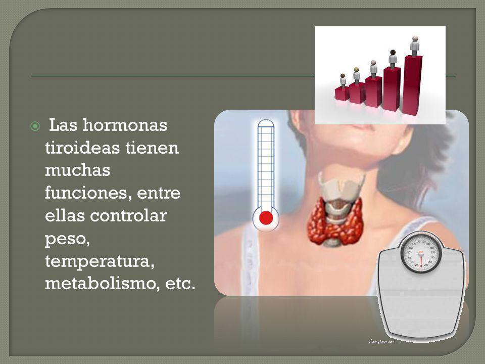 Las hormonas tiroideas tienen muchas funciones, entre ellas controlar peso, temperatura, metabolismo, etc.