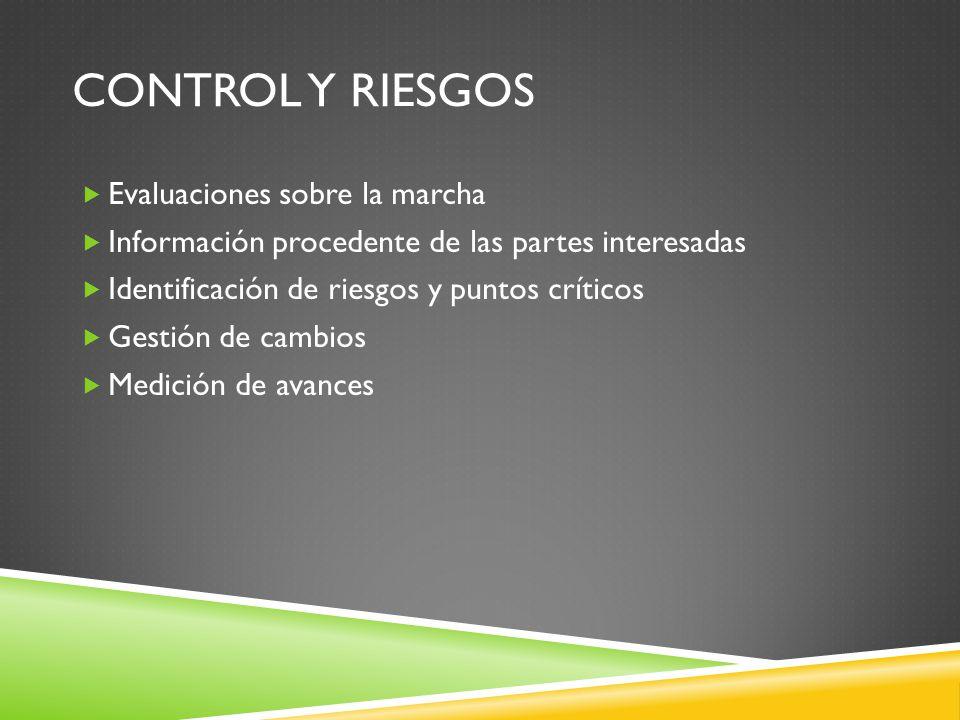 CONTROL Y RIESGOS Evaluaciones sobre la marcha Información procedente de las partes interesadas Identificación de riesgos y puntos críticos Gestión de cambios Medición de avances