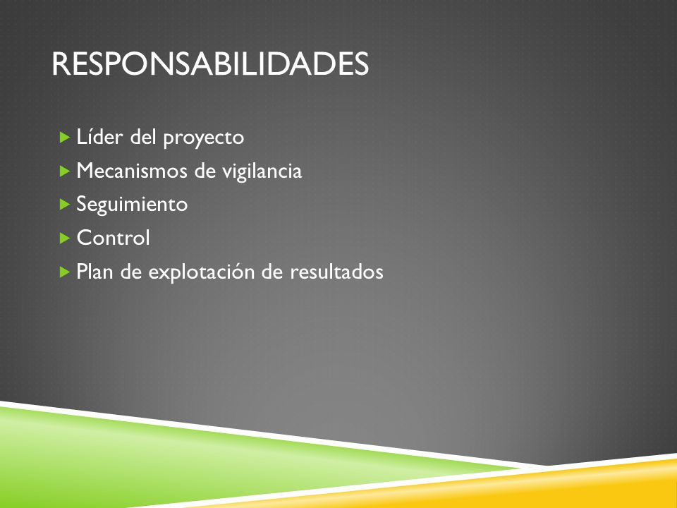 RESPONSABILIDADES Líder del proyecto Mecanismos de vigilancia Seguimiento Control Plan de explotación de resultados