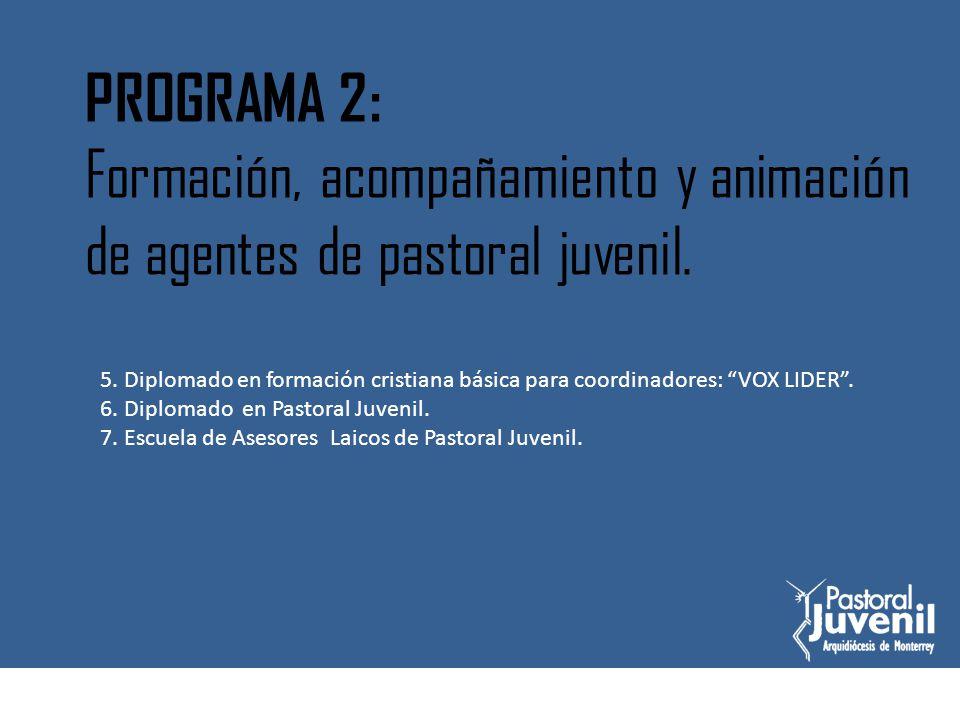 Diplomado de formación básica cristiana para coordinadores VOX LIDER.