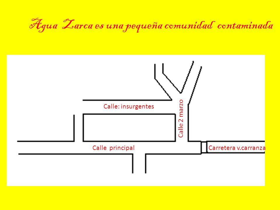 Agua Zarca es una pequeña comunidad contaminada Calle principalCarretera v.carranza Calle 2 marzo Calle: insurgentes