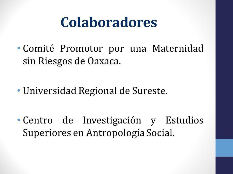 Colaboradores Comité Promotor por una Maternidad sin Riesgos de Oaxaca.