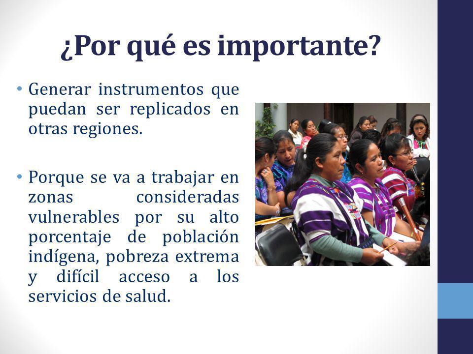 ¿Por qué es importante.Generar instrumentos que puedan ser replicados en otras regiones.