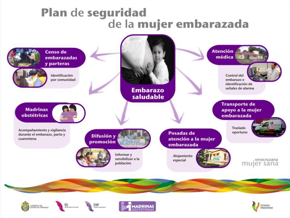 Redes de apoyo social: se constituyen a partir de lazos entre parientes, vecinos o amigos, brindando a las mujeres apoyo emocional y material, durante el embarazo, parto y cuarentena.