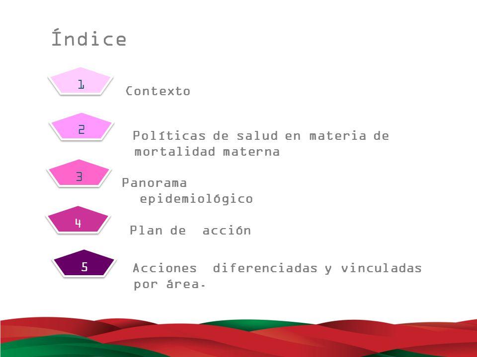 Mortalidad Materna: Problema de justicia social.