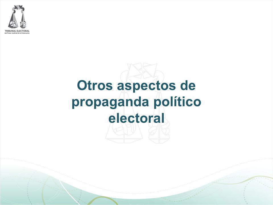 Otros aspectos de propaganda político electoral