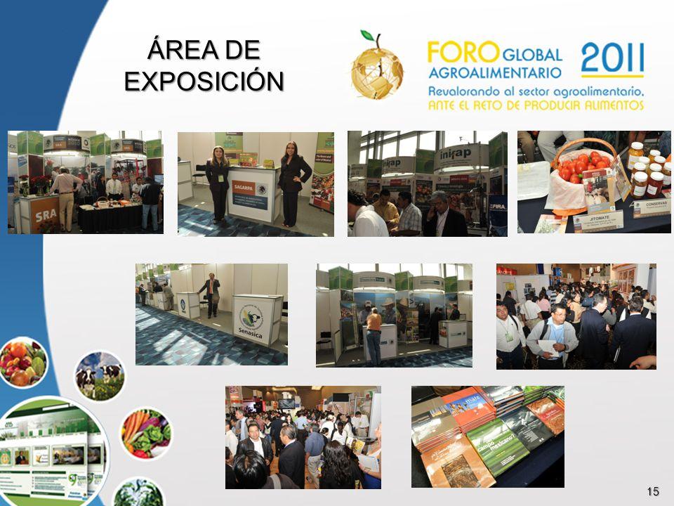 15 ÁREA DE EXPOSICIÓN