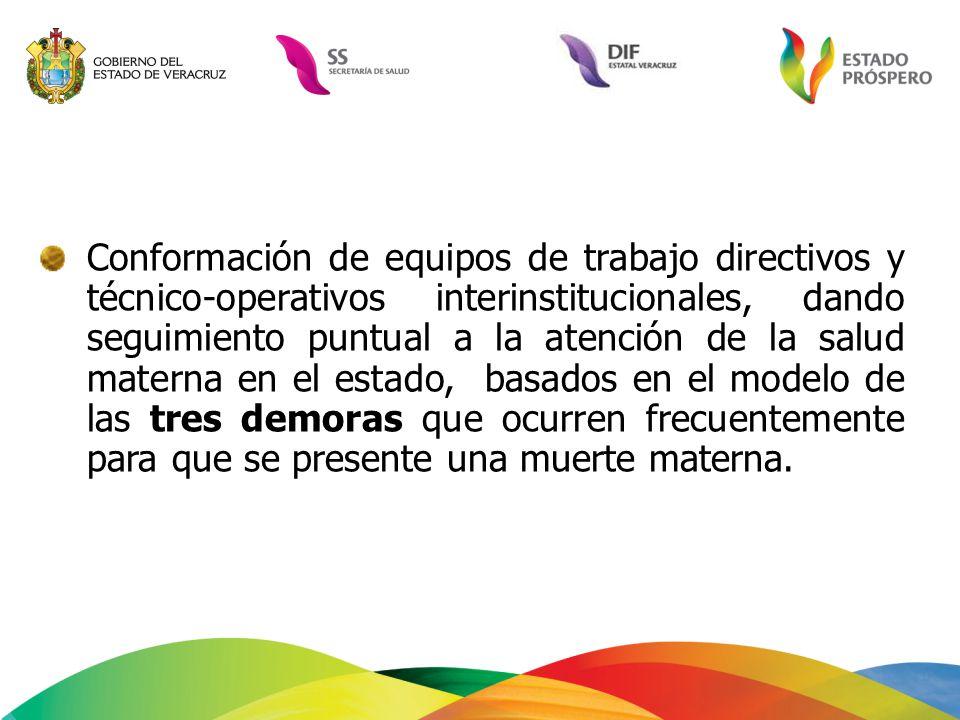 Conformación de equipos de trabajo directivos y técnico-operativos interinstitucionales, dando seguimiento puntual a la atención de la salud materna e