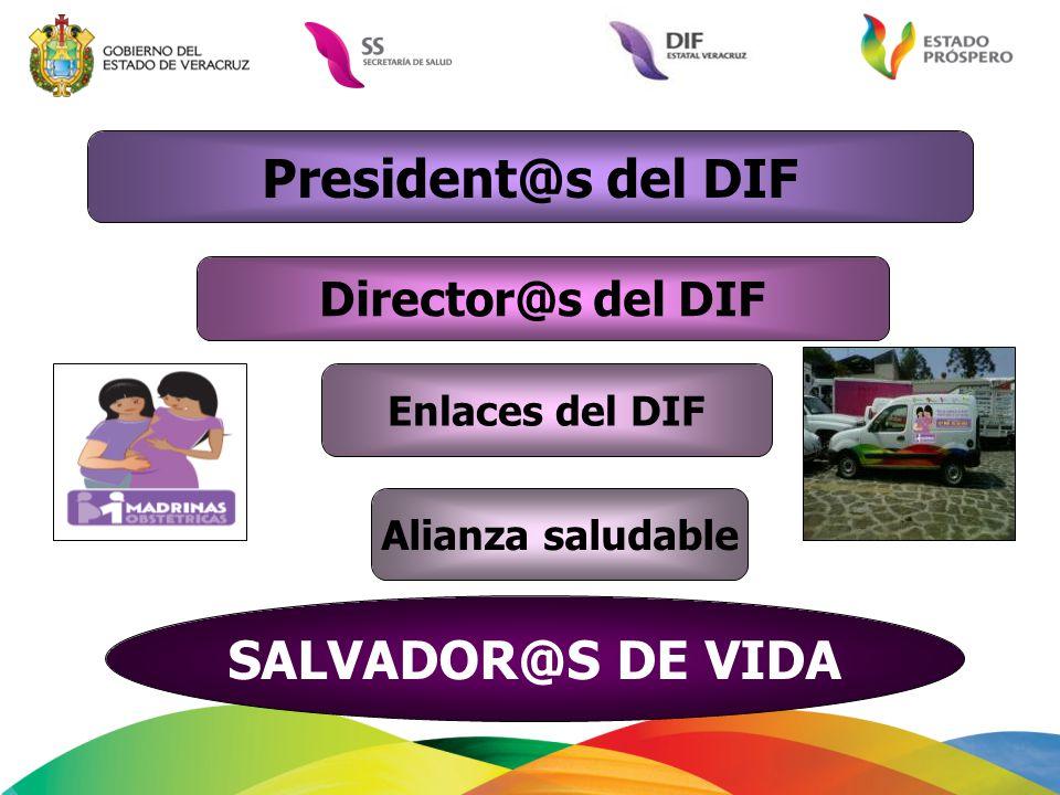 President@s del DIF Director@s del DIF Enlaces del DIF SALVADOR@S DE VIDA Alianza saludable