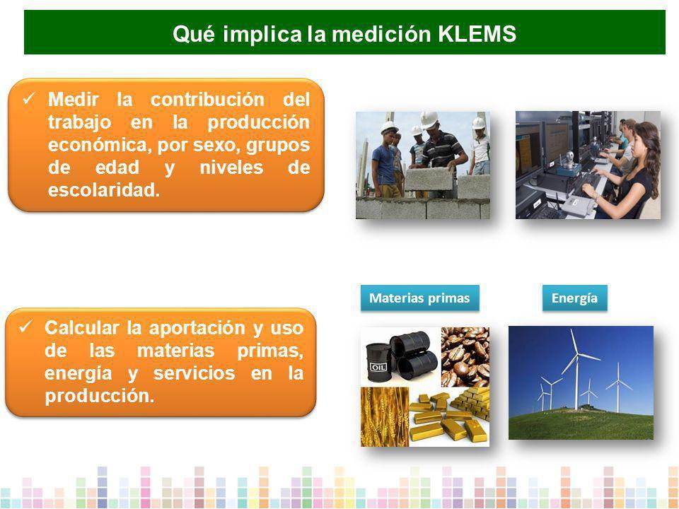 Calcular la aportación y uso de las materias primas, energía y servicios en la producción.