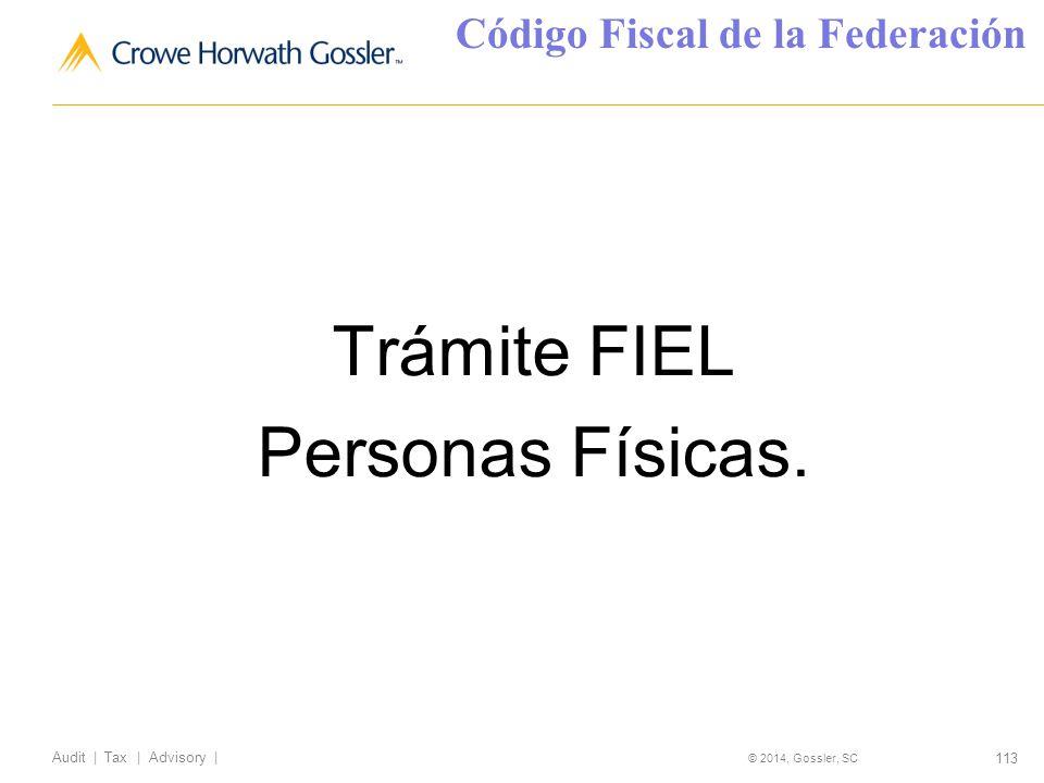 113 Audit   Tax   Advisory   © 2014, Gossler, SC Trámite FIEL Personas Físicas.