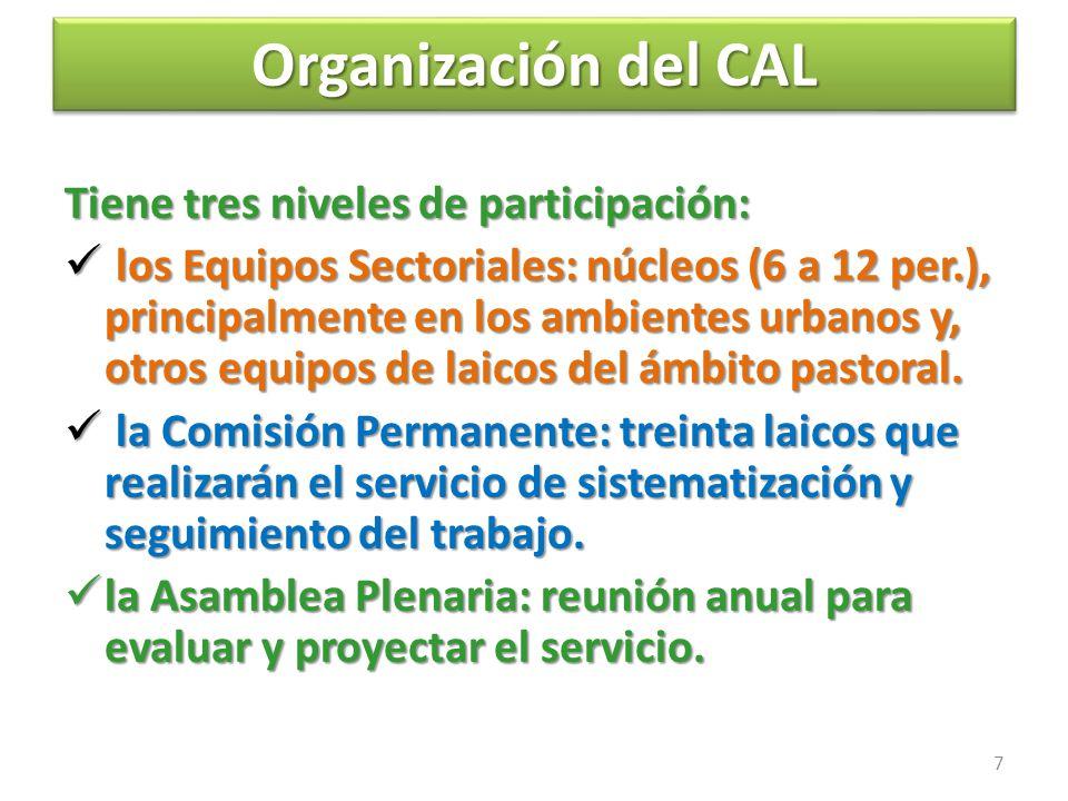Organización del CAL Organización del CAL Tiene tres niveles de participación: l los Equipos Sectoriales: núcleos (6 a 12 per.), principalmente en los ambientes urbanos y, otros equipos de laicos del ámbito pastoral.