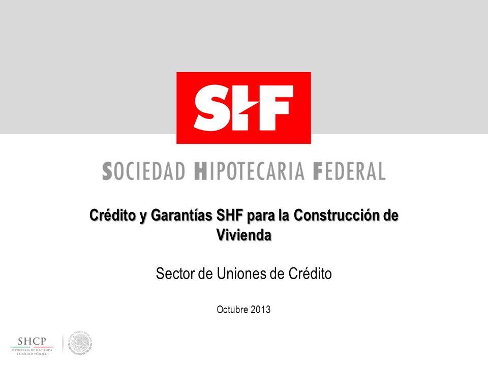 Crédito y Garantías SHF para la Construcción de Vivienda Crédito y Garantías SHF para la Construcción de Vivienda Sector de Uniones de Crédito Octubre 2013