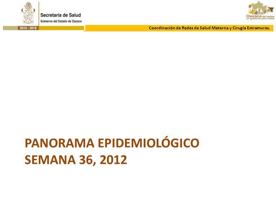 PANORAMA EPIDEMIOLÓGICO SEMANA 36, 2012 Coordinación de Redes de Salud Materna y Cirugía Extramuros.