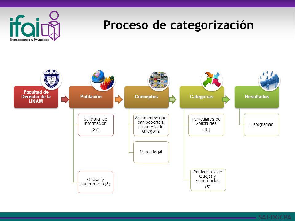 SAI-DGCPA Proceso de categorización