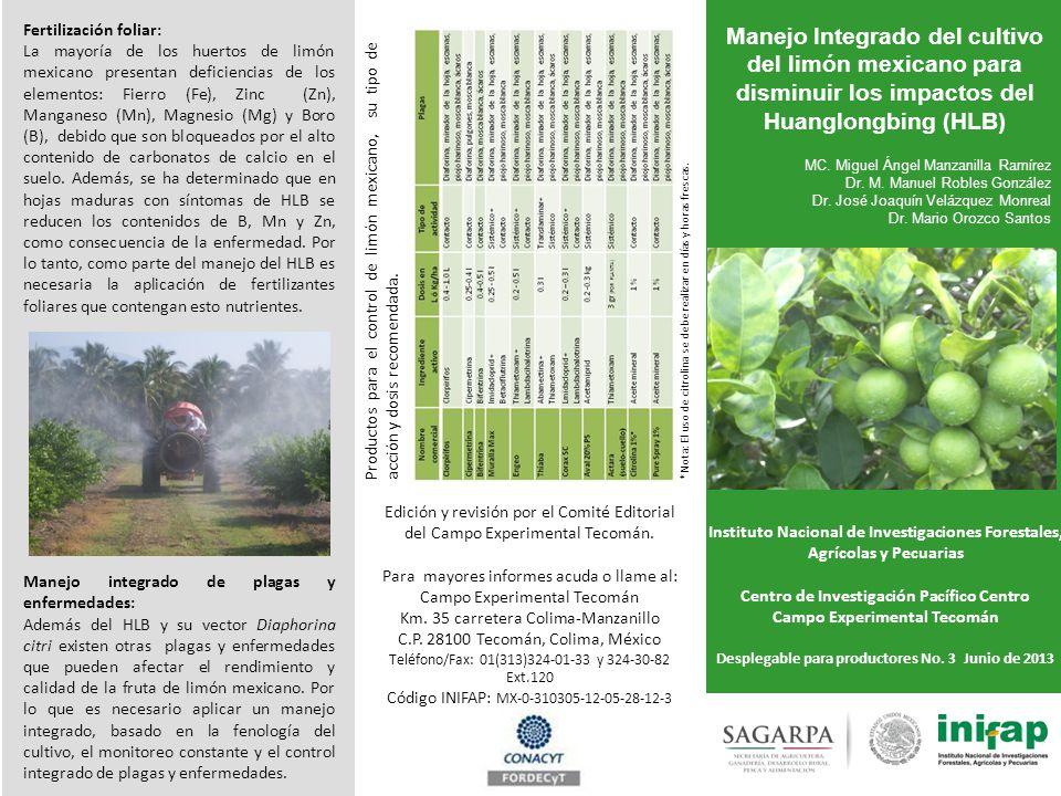 Manejo Integrado del cultivo del limón mexicano para disminuir los impactos del Huanglongbing (HLB) MC. Miguel Ángel Manzanilla Ramírez Dr. M. Manuel