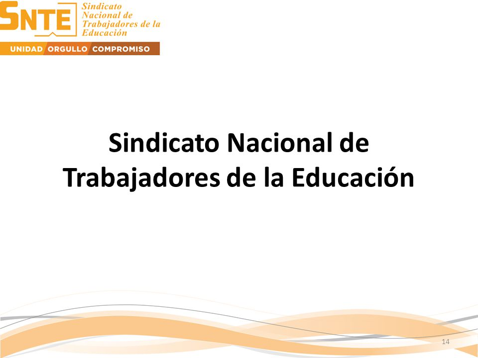 Sindicato Nacional de Trabajadores de la Educación 14