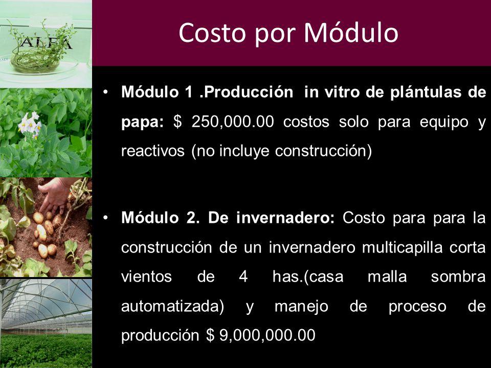 Costo por Módulo Módulo 1.Producción in vitro de plántulas de papa: $ 250,000.00 costos solo para equipo y reactivos (no incluye construcción) Módulo