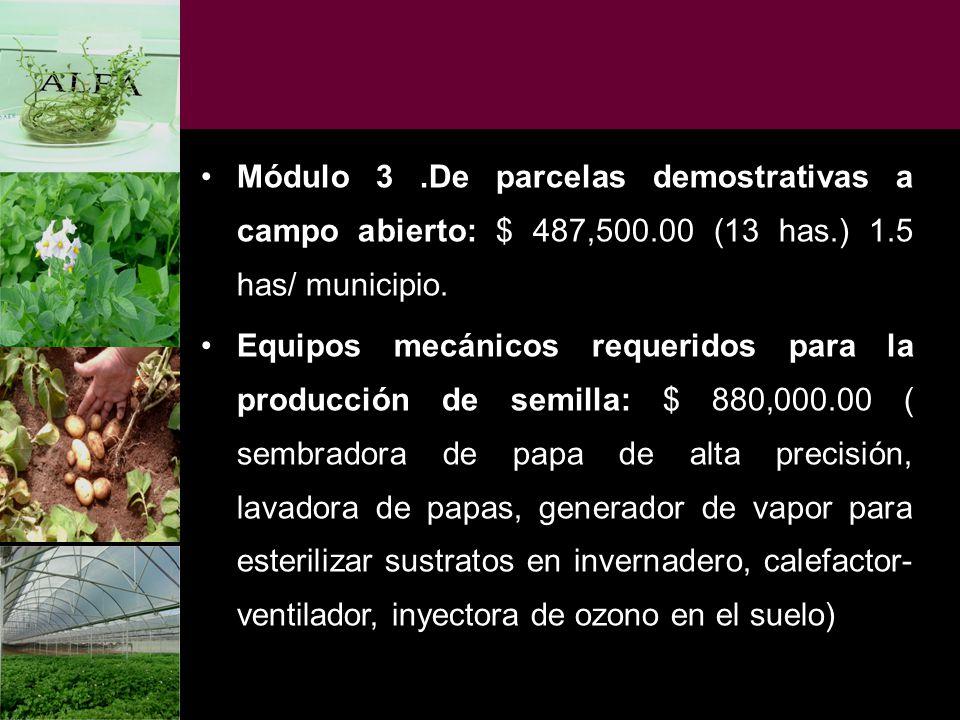Módulo 3.De parcelas demostrativas a campo abierto: $ 487,500.00 (13 has.) 1.5 has/ municipio. Equipos mecánicos requeridos para la producción de semi