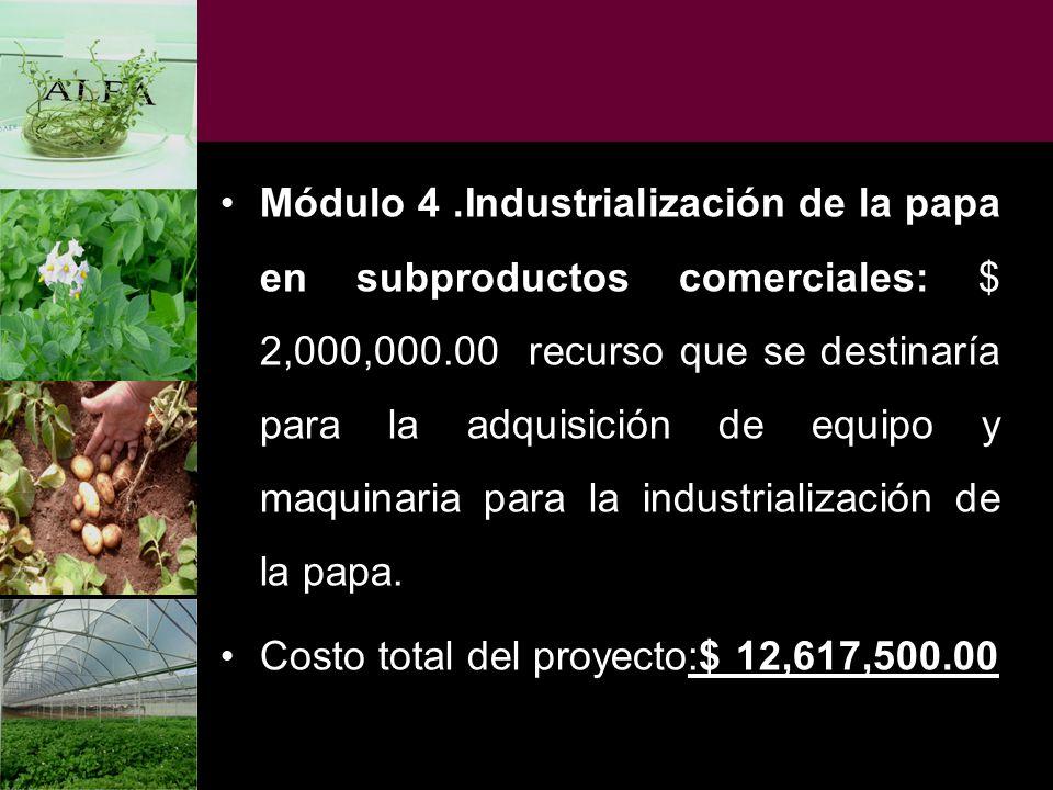 Módulo 4.Industrialización de la papa en subproductos comerciales: $ 2,000,000.00 recurso que se destinaría para la adquisición de equipo y maquinaria