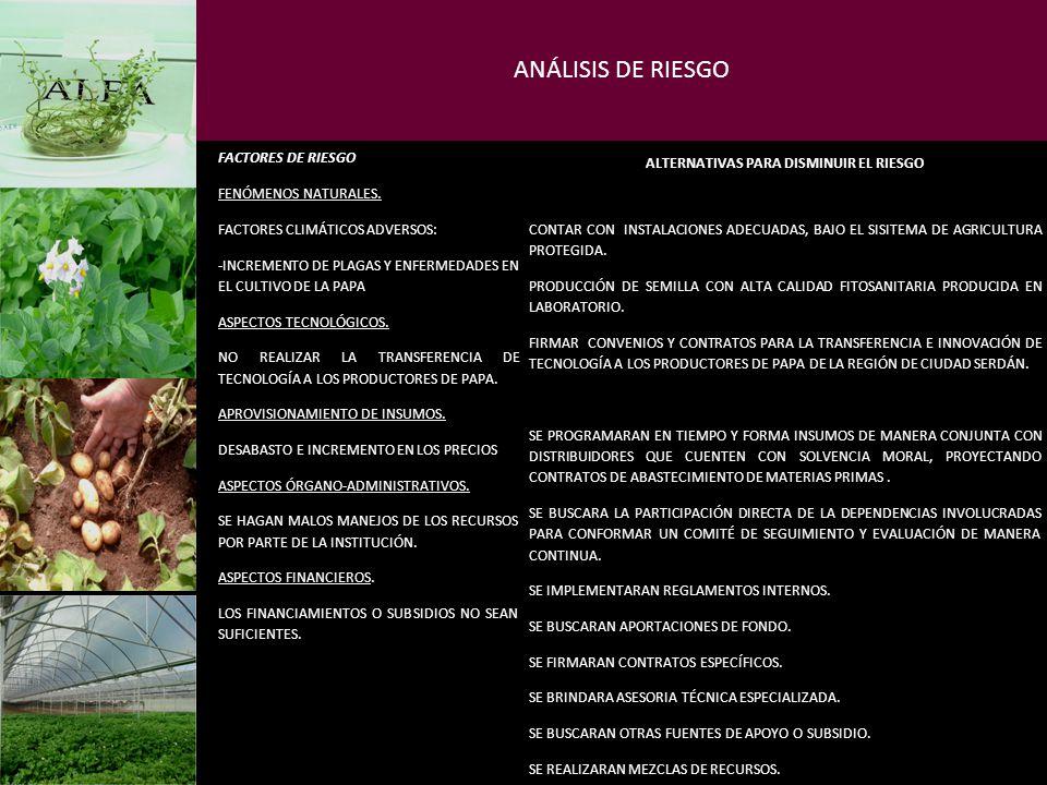 ANÁLISIS DE RIESGO FACTORES DE RIESGO ALTERNATIVAS PARA DISMINUIR EL RIESGO FENÓMENOS NATURALES. FACTORES CLIMÁTICOS ADVERSOS: -INCREMENTO DE PLAGAS Y