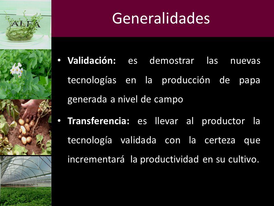 Generalidades Validación: es demostrar las nuevas tecnologías en la producción de papa generada a nivel de campo Transferencia: es llevar al productor