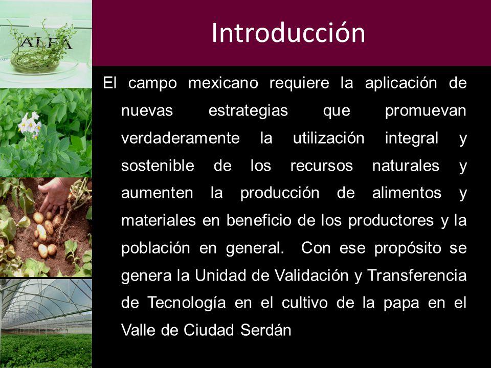 Introducción El campo mexicano requiere la aplicación de nuevas estrategias que promuevan verdaderamente la utilización integral y sostenible de los r
