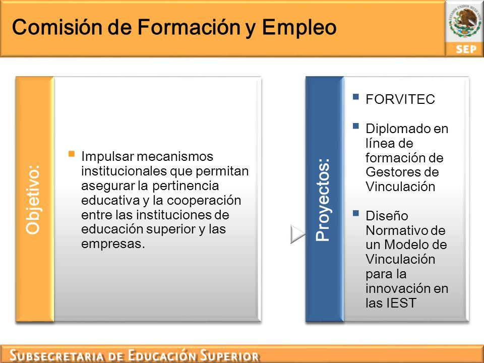 Comisión de Formación y Empleo Impulsar mecanismos institucionales que permitan asegurar la pertinencia educativa y la cooperación entre las instituci
