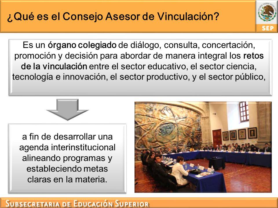 ¿Qué es el Consejo Asesor de Vinculación? a fin de desarrollar una agenda interinstitucional alineando programas y estableciendo metas claras en la ma
