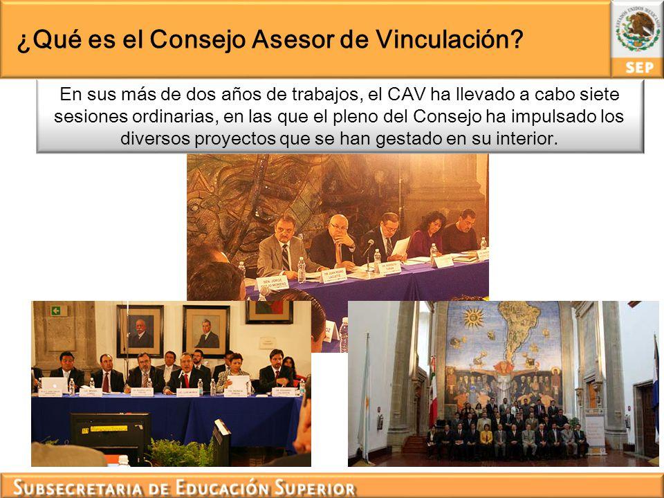 Instancias que componen al CAV El CAV está compuesto por 24 instancias pertenecientes a los sectores educativo, ciencia y tecnología, gubernamental, productivo y social del país.