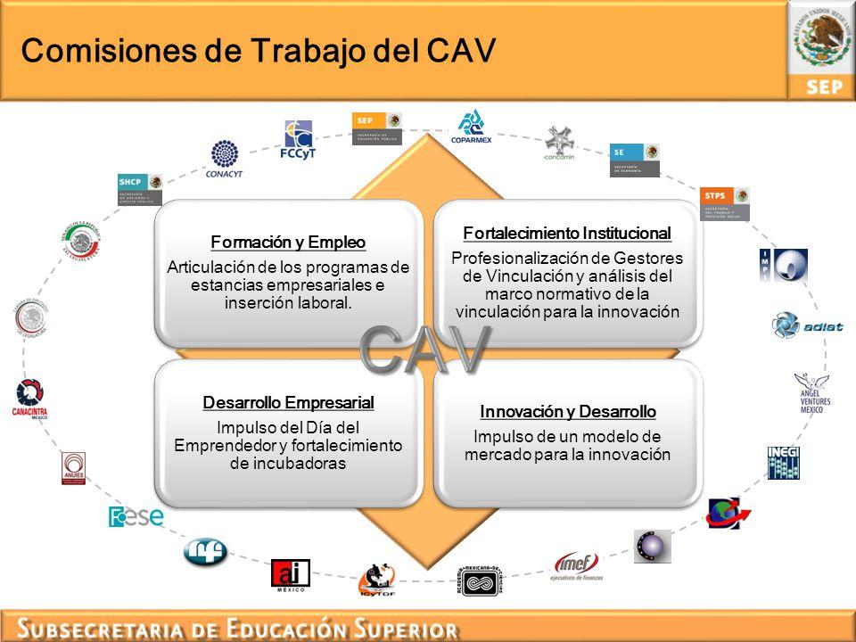 Comisiones de Trabajo del CAV Formación y Empleo Articulación de los programas de estancias empresariales e inserción laboral. Desarrollo Empresarial