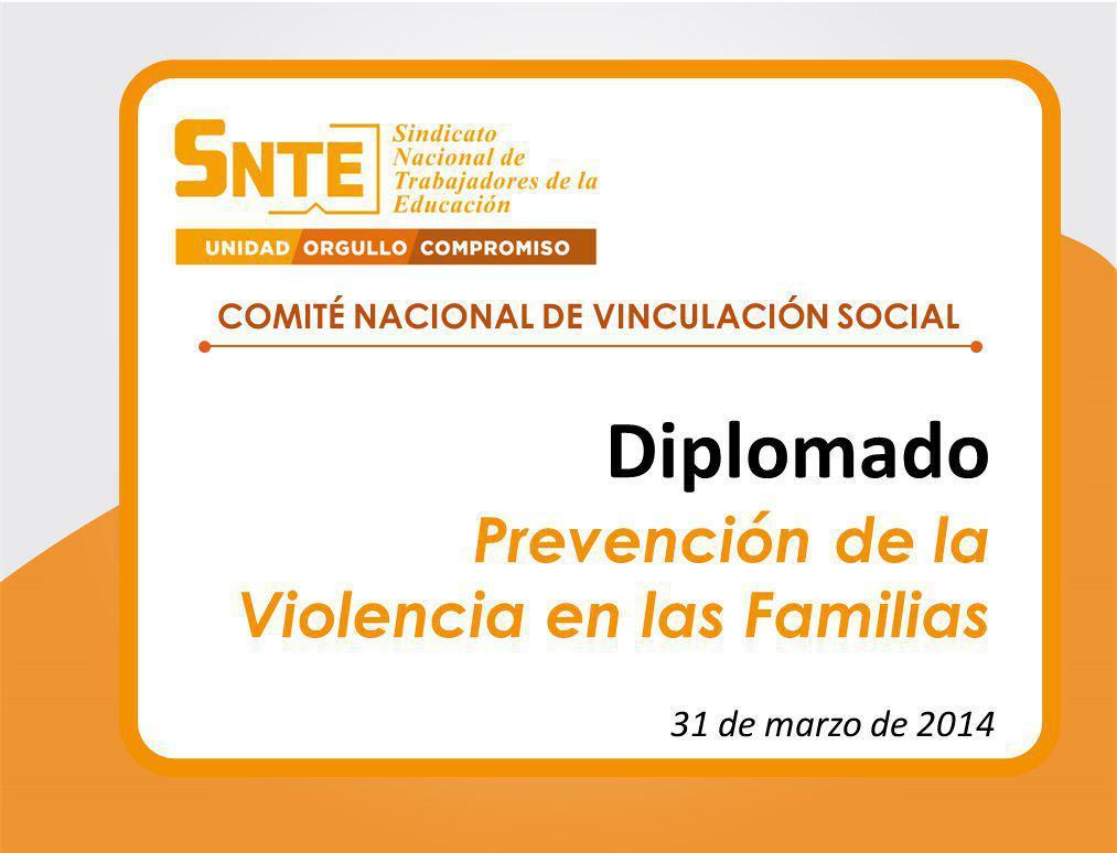 COMITÉ NACIONAL DE VINCULACIÓN SOCIAL Diplomado Prevención de la Violencia en las Familias 31 de marzo de 2014