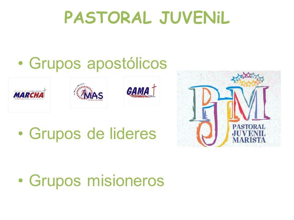 PASTORAL JUVENiL Grupos apostólicos Grupos de lideres Grupos misioneros