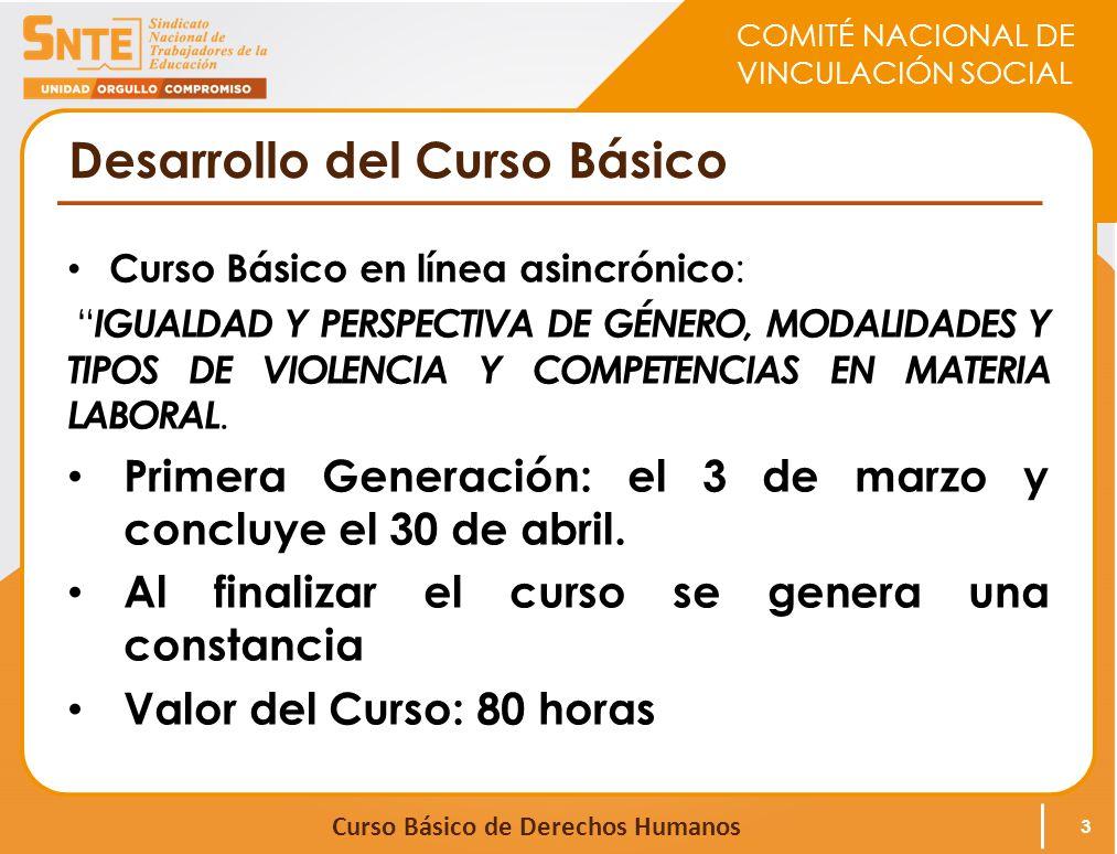 COMITÉ NACIONAL DE VINCULACIÓN SOCIAL Curso Básico de Derechos Humanos Temario El Curso está integrado por 10 módulos y 4 Conferencias : 4 MÓDULO 1.