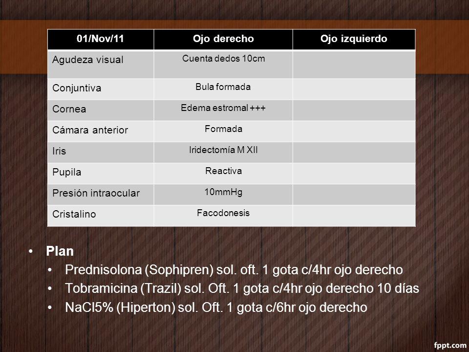 Plan Cita 7d Valorar cirugía de catarata vs refracción Krytantek e Hiperton igual 19/Sep/11Ojo derechoOjo izquierdo Agudeza visual Cuenta dedos 50cm (*) No mejora estenopeico Conjuntiva Hiposfagma superiorNormal Cornea Edema estromal +, estrías en Descemet Clara Camara anterior Formada Iris Iridectomia M XIINormal Pupila Reactiva Presión intraocular 9mmHg16mmHg Cristalino Facodonesis
