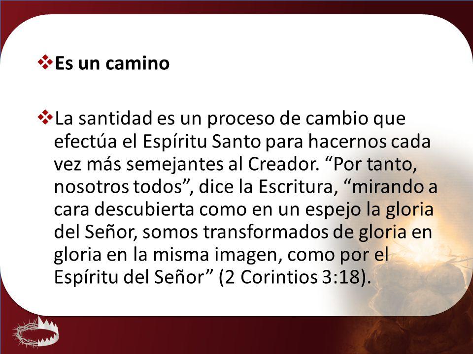 Es un camino La santidad es un proceso de cambio que efectúa el Espíritu Santo para hacernos cada vez más semejantes al Creador. Por tanto, nosotros t