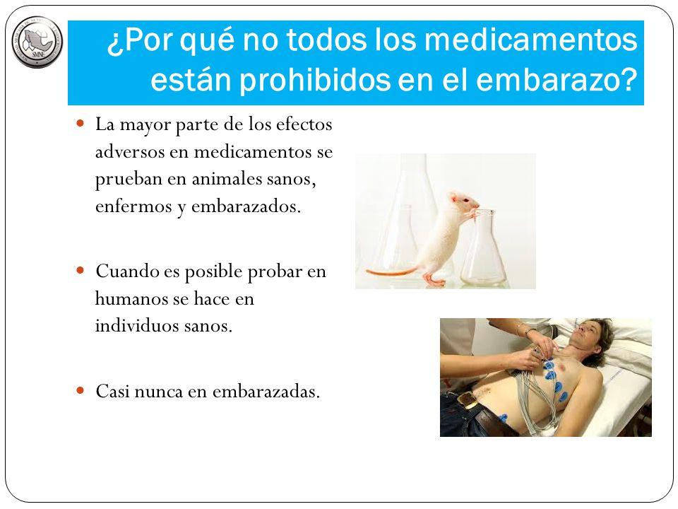 ¿Por qué no todos los medicamentos están prohibidos en el embarazo? La mayor parte de los efectos adversos en medicamentos se prueban en animales sano