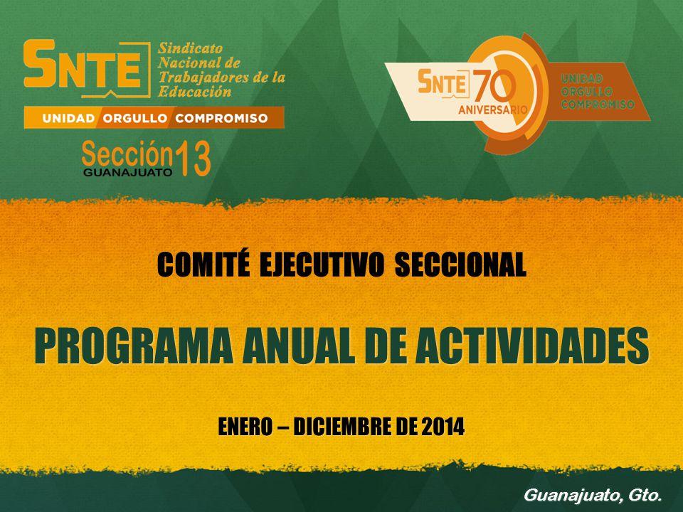 PROGRAMA ANUAL DE ACTIVIDADES ENERO – DICIEMBRE DE 2014 Guanajuato, Gto. COMITÉ EJECUTIVO SECCIONAL
