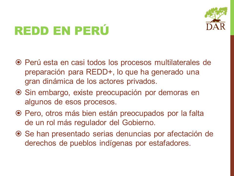 REDD EN PERÚ Perú esta en casi todos los procesos multilaterales de preparación para REDD+, lo que ha generado una gran dinámica de los actores privad