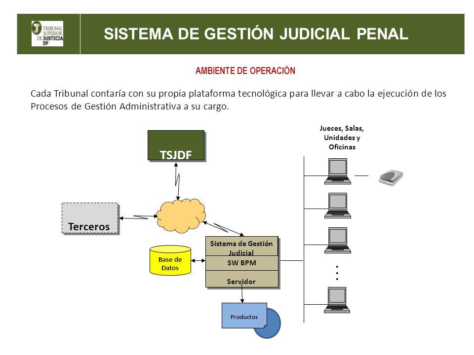 SISTEMA DE GESTIÓN JUDICIAL PENAL AMBIENTE DE OPERACIÓN Servidor Sistema de Gestión Judicial SW BPM Base de Datos TSJDF Productos Jueces, Salas, Unida