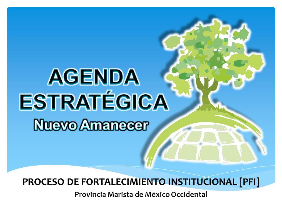 PROCESO DE FORTALECIMIENTO INSTITUCIONAL [PFI] Provincia Marista de México Occidental