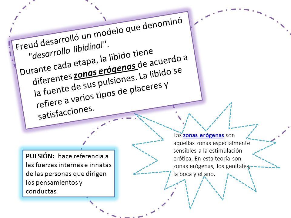 Freud desarrolló un modelo que denominó desarrollo libidinal .