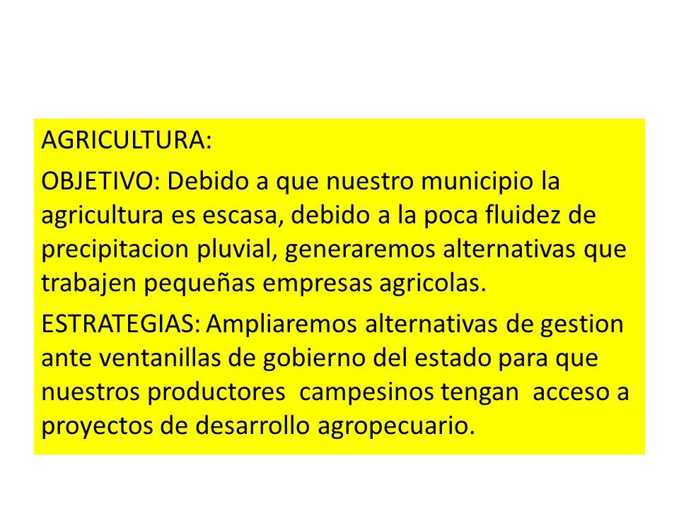 AGRICULTURA: OBJETIVO: Debido a que nuestro municipio la agricultura es escasa, debido a la poca fluidez de precipitacion pluvial, generaremos alterna