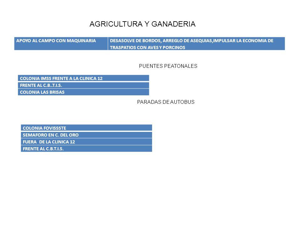 APOYO AL CAMPO CON MAQUINARIADESASOLVE DE BORDOS, ARREGLO DE ASEQUIAS,IMPULSAR LA ECONOMIA DE TRASPATIOS CON AVES Y PORCINOS AGRICULTURA Y GANADERIA C