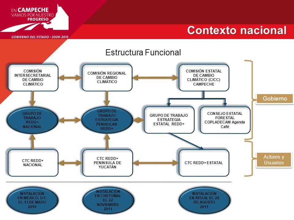 Contexto nacional Contexto nacional Cronograma de la Estrategia Nacional REDD+